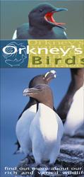 Orkney's Birds Leaflet